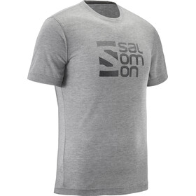 Salomon Explore Graphic Miehet Lyhythihainen paita , harmaa